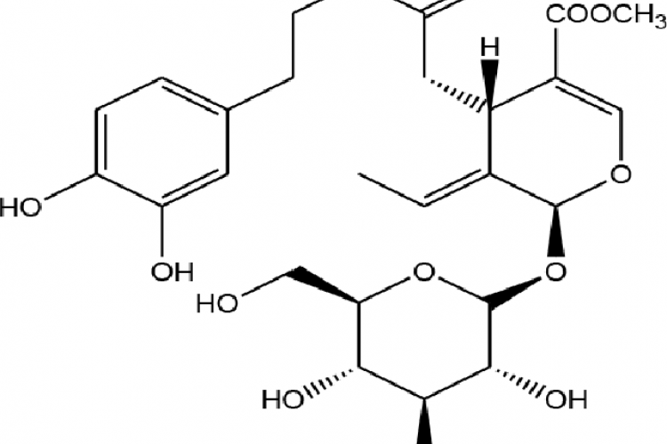 Chemical structure of Oleuropein